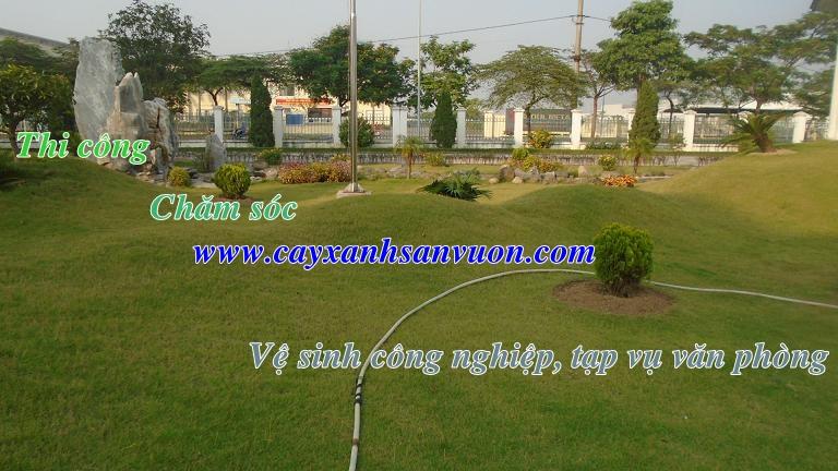 Chăm sóc sân vườn, vệ sinh công nghiệp